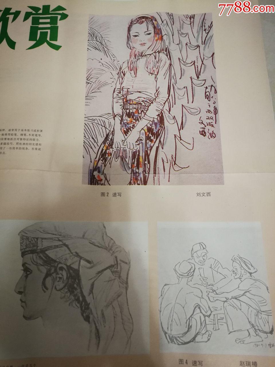 挂图手机美术教学速写素描课本、画片(小学、手把手教你玩转森林图片