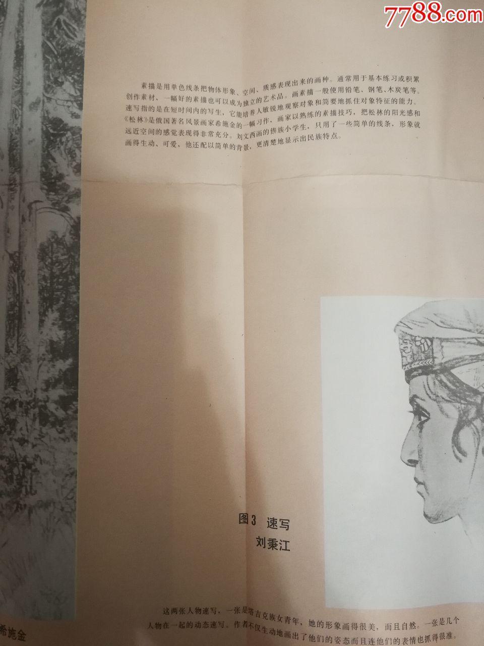课本挂图美术教学素描速写小学、画片(森林、mfcclub操作说明图片