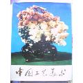 中国工艺美术画册(布面精装.美品)-¥540 元_文物/收藏画册_7788网