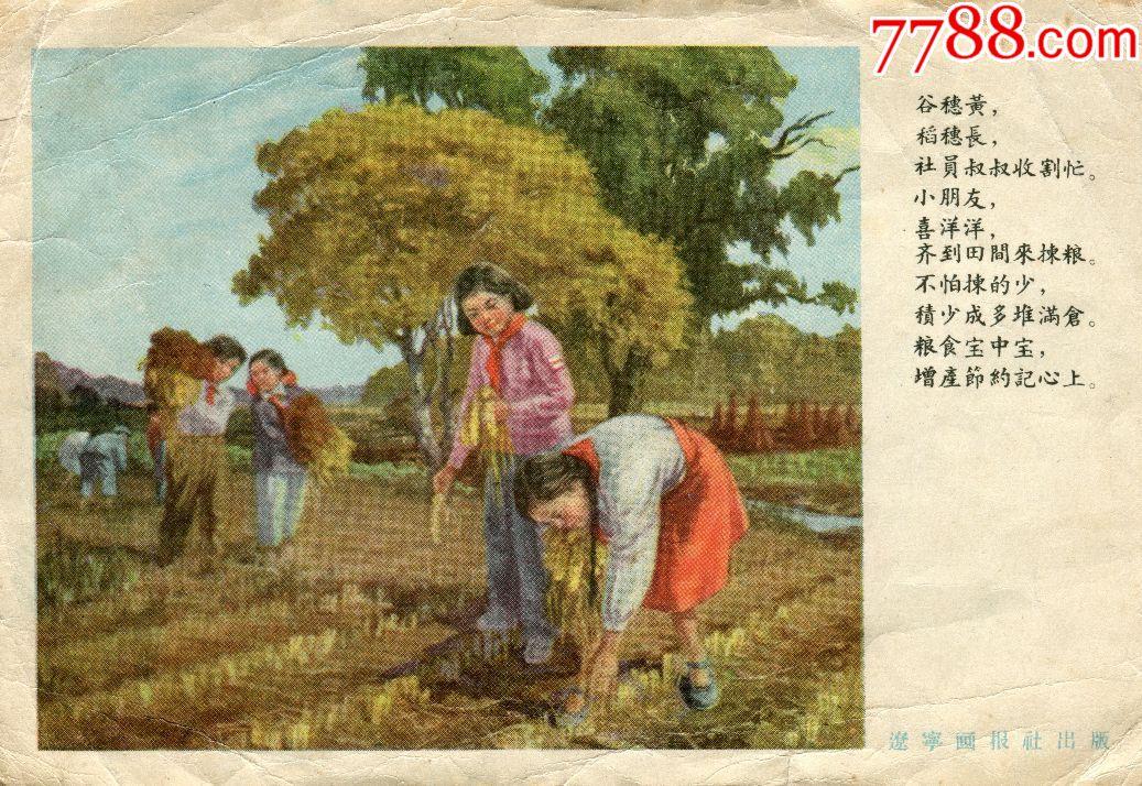 ��稻穗,� �����笊绯霭�(au19661156)_