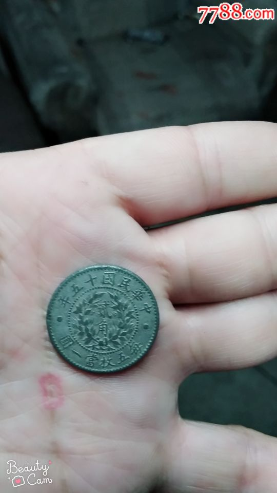 民国十五年硬币一个(au20391969)_