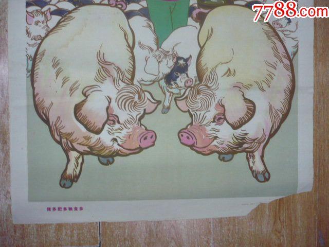 猪多肥多粮食多(大跃进题材)_年画/宣传画_长春藏店图片