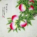 凌雪老师精品花鸟(zc20675096)_7788旧货商城__七七八八商品交易平台(7788.com)