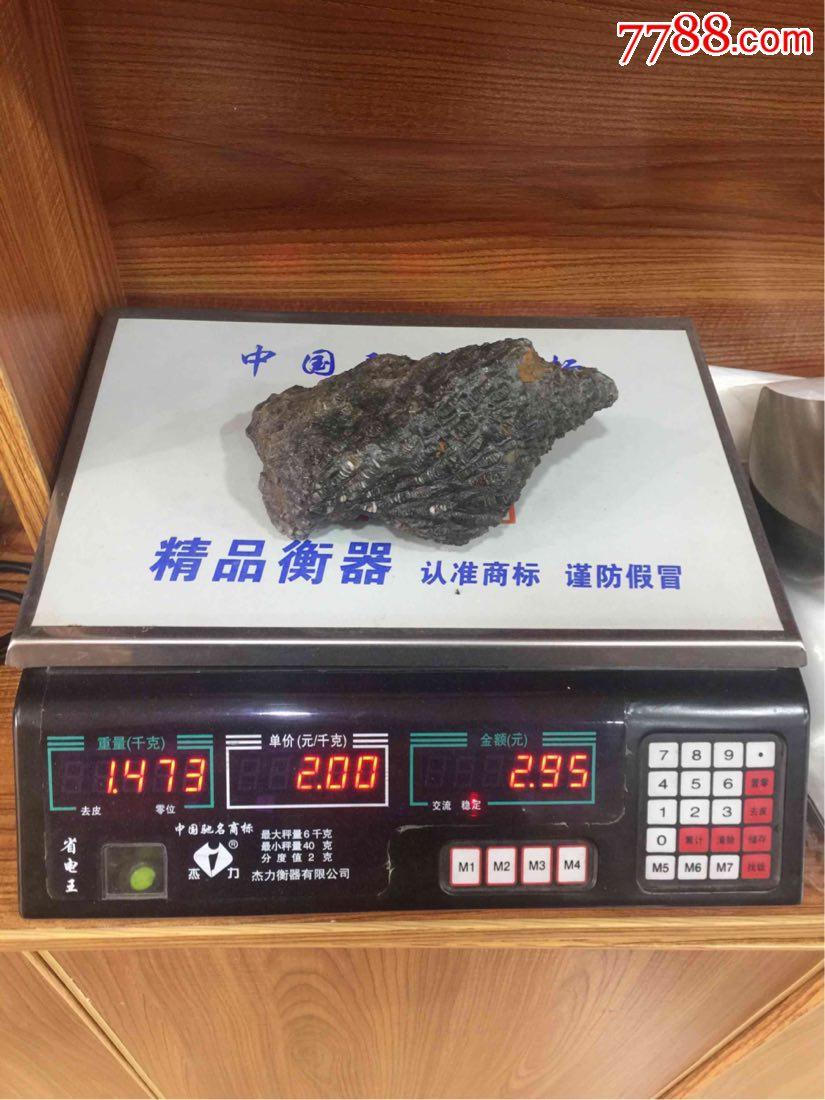貴州安順紫云珊瑚化石_第10張_