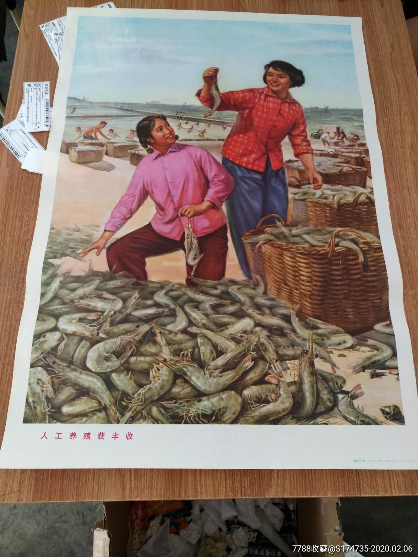 74年大文革山东印:人工养殖获丰收!库存未阅!_价格181元_第1张_
