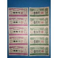 贵州省布票1980年壹市寸壹市尺五连票