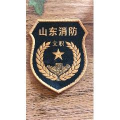 作废舞山东消防文职(au23230585)_7788收藏__收藏热线