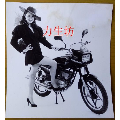 美女——摩托车(au23237695)_7788收藏__收藏热线