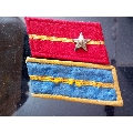 五十年代两枚好品领章(au23238798)_7788收藏__收藏热线