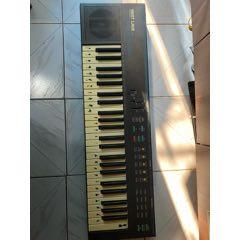 西湖DZQ-49電子琴(au25033338)_7788舊貨商城__七七八八商品交易平臺(7788.com)