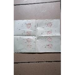 紅泥灣糧所豆付票(一大張,八小張)(au25121139)_7788舊貨商城__七七八八商品交易平臺(7788.com)