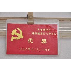 1996年塔峪鎮黨員代表會議出席證(au25146448)_7788舊貨商城__七七八八商品交易平臺(7788.com)