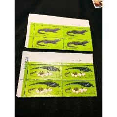 T85鱷魚直角廠銘方連(au25156137)_7788舊貨商城__七七八八商品交易平臺(7788.com)