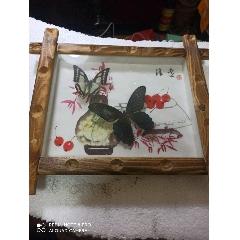 兩只蝴蝶標本鏡框(au25400237)_7788舊貨商城__七七八八商品交易平臺(7788.com)