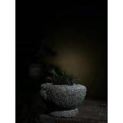 老物件老石雕石臼菖蒲盆(au25410740)_7788舊貨商城__七七八八商品交易平臺(7788.com)