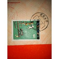 郵票T51實寄封