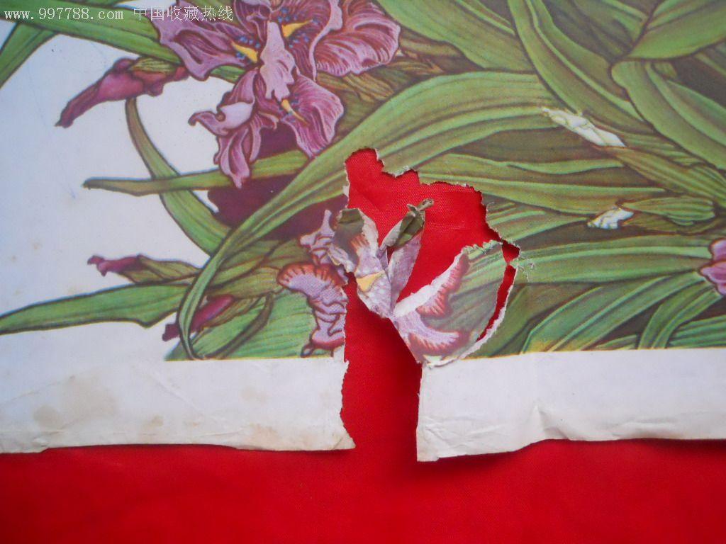 对开年画:珍禽异卉(1982.07)张宝元作
