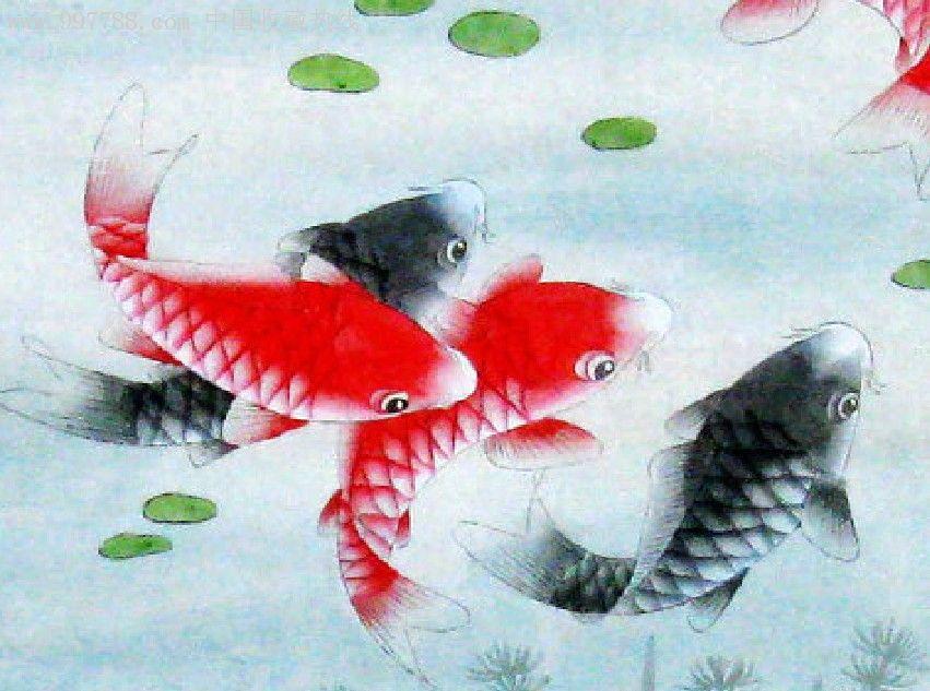 王青一尺斗方工笔鱼荷花鱼纯手绘
