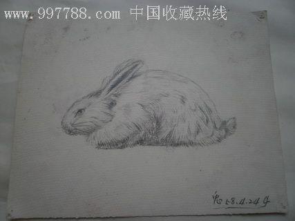 铅笔画兔子图片